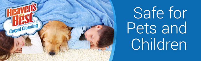 Pet Odor and Pet Stain Removal_Pet Damaged Carpet Cleaning_carpet cleaning tifton ga