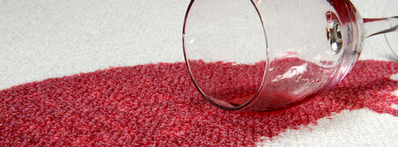 tifton carpet cleaning_carpet and upholstery stain guard protection_heaven's best carpet cleaners